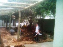 As árvores frutíferas foram mantidas